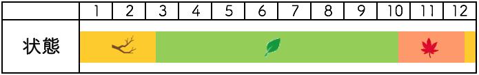 カエデの年間樹種姿