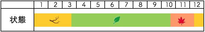 南京ハゼの年間樹種姿